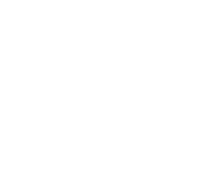 BCH Realty